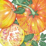 Organic-Heirloom-Tomato-Pinneapple.jpg