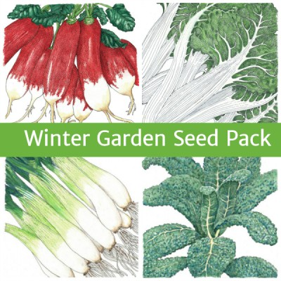 Seed Pack Garden Winter text