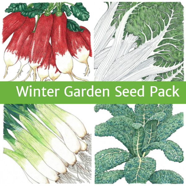 Winter Garden Seed Pack Seeds For Generations
