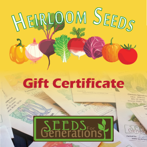 sfg-seed-gift-certificate-product-image-square