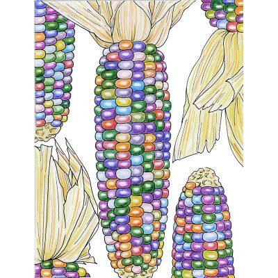 Organic-Heirloom-Corn-Glass-Gem-illustration