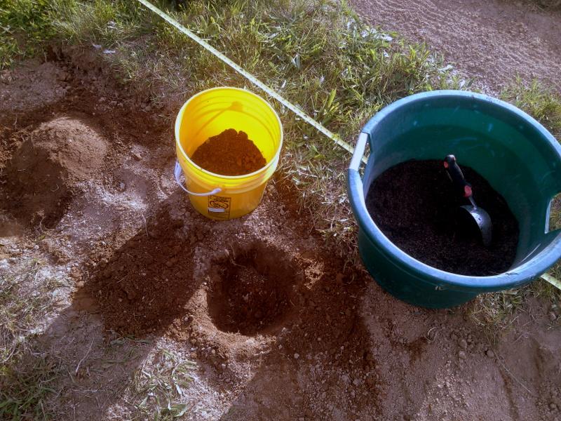 Soil amendment for hill planting