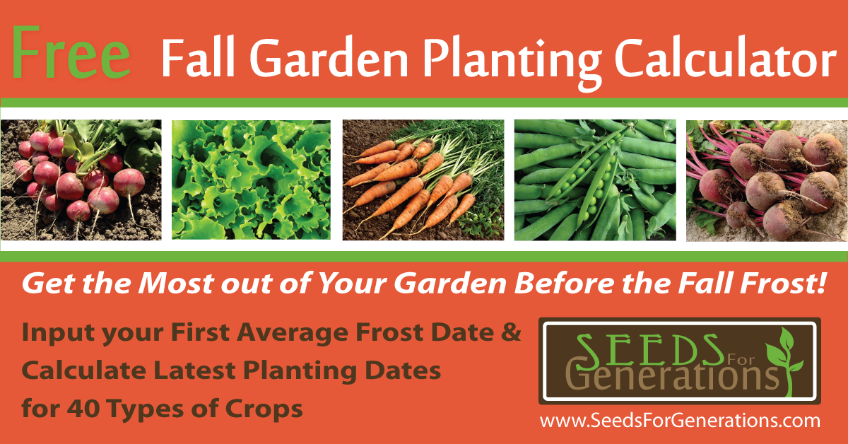 Plan Your Garden Now