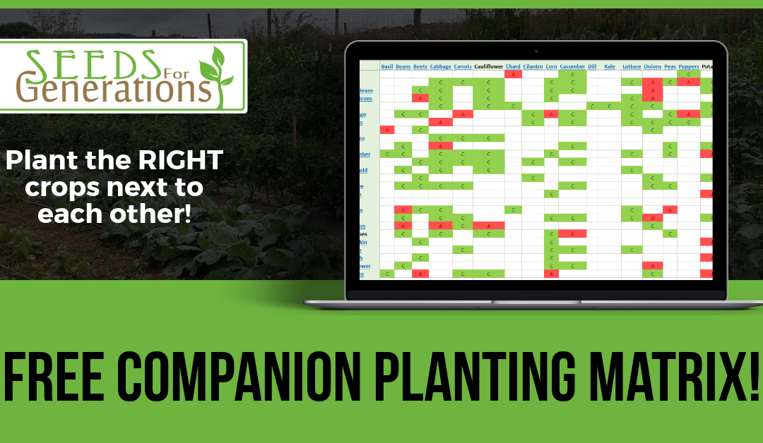 Free Companion Planting Matrix